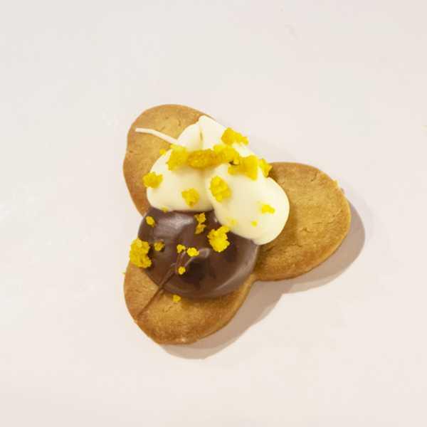 Biscotto Ciocc Bianco Nutella